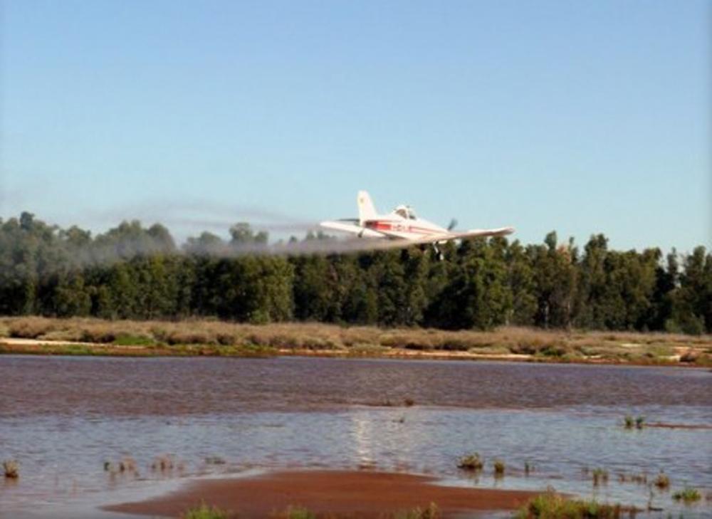 Diputación intensifica el tratamiento de mosquitos ante la coincidencia de lluvias y mareas vivas