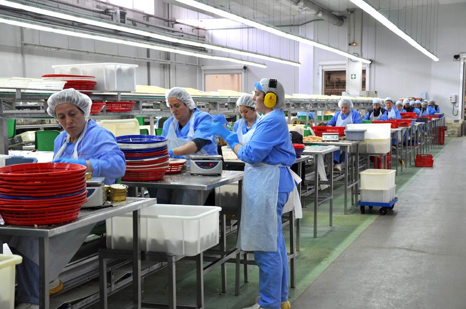 Grupo Consorcio reduce su consumo de agua en la elaboración de conservas de pescado con un Plan de Producción Ecoeficiente diseñado por AZTI
