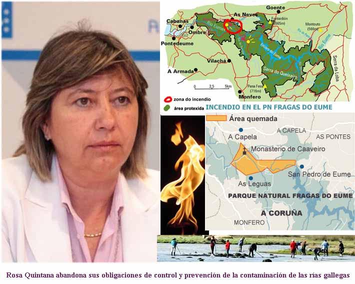 Xornal de Galicia para el Mundo - Pladesemapesga, pone las irregularidades  del PP en Fandicosta y el incendio de las Fragas del Eume al aire y pide  ceses fulminantes por considerarlos máximos